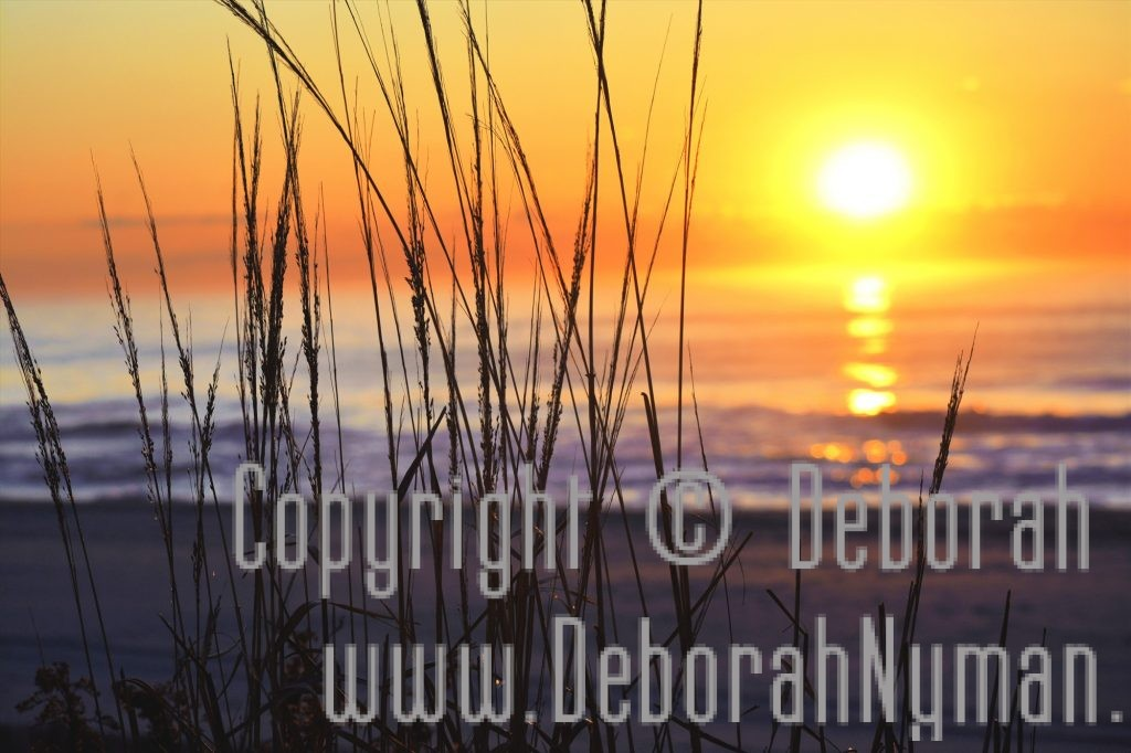 Photograph: Surnise at the Beach