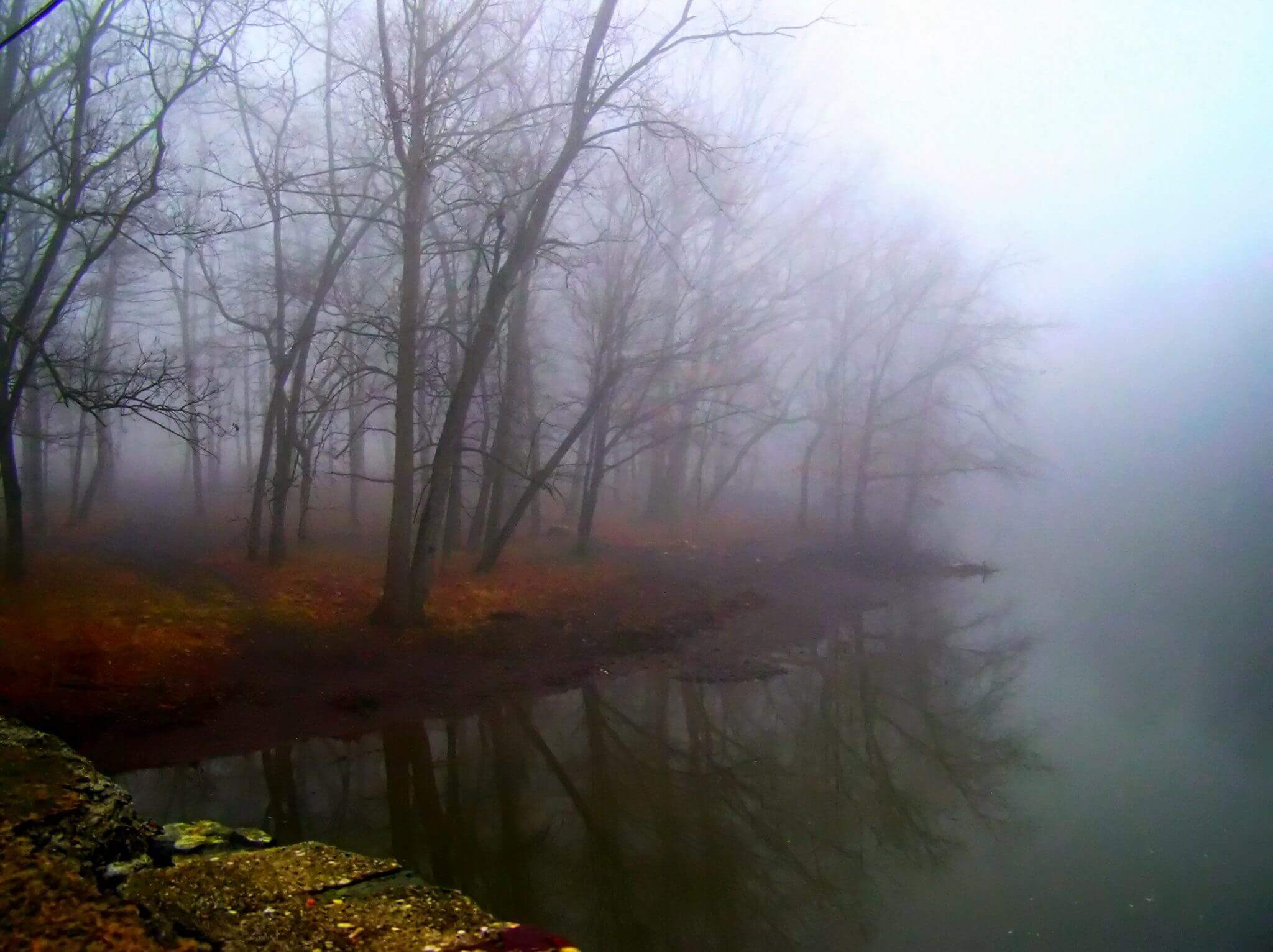 image of foggy landscape