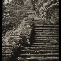 WatkinsGlen Steps- Vintage